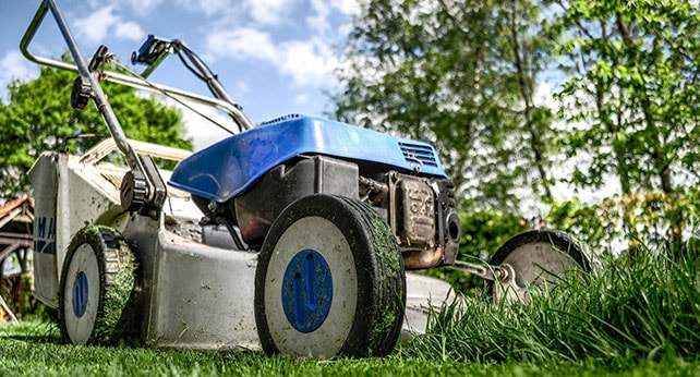 градинарски услуги - същност и цени
