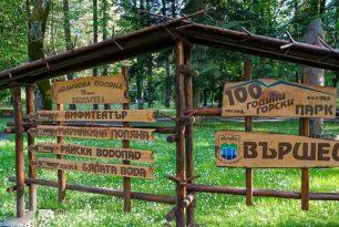 Вършец – развитие и туризъм