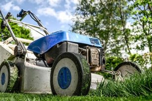Градинарски услуги – същност и цени